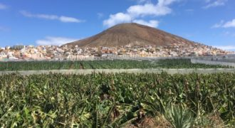 En venta finca en La Vega